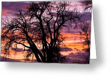 County Sunset Greeting Card
