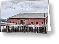 Coupeville Wharf Greeting Card