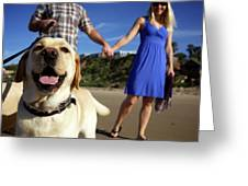 Couple Take Their Dogs For A Walk Greeting Card