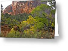 Court Of The Patriarchs Zion Np Utah Greeting Card by Tim Fitzharris