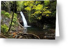Courthouse Falls In North Carolina Greeting Card