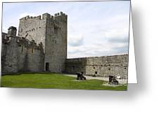 Courtyard Cahir Castle Greeting Card
