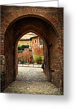 Courtyard Of Cathedral Of Ste-cecile In Albi France Greeting Card