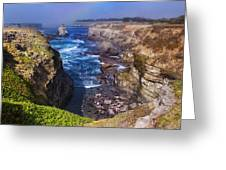 Cove On The Mendocino Coast Greeting Card