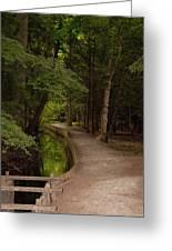 Cove Path Greeting Card