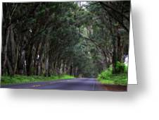 Covered By Trees Greeting Card