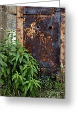 Covered In Rust Greeting Card