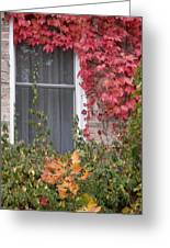 Covered Window Greeting Card by Margaret McDermott