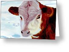 Cow A Bunga Greeting Card