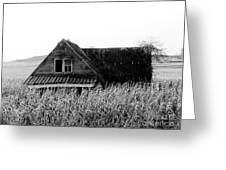 Cow House Black And White Greeting Card