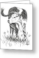 Cow In Pen And Ink Greeting Card