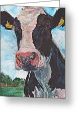 Cow No 05. 0556 Irish Friesian Cow Greeting Card