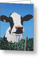 Cow On A Ditch Greeting Card