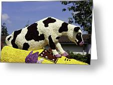 Cow On Clog 3 Greeting Card