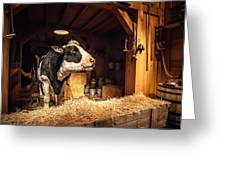 Cow On The Farm Greeting Card