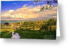 Cow Out To Pasture In Costa Rica Greeting Card