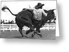Cowboy Falling  From Bull Greeting Card