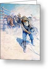Cowboy Roping Wild Horses Greeting Card