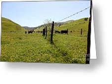 Cows Along The Rolling Hills Landscape Of The Black Diamond Mines In Antioch California 5d22339 Greeting Card by Wingsdomain Art and Photography