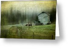 Cows By The Road Greeting Card by Kathy Jennings