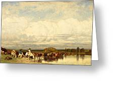 Cows Crossing A Ford Greeting Card