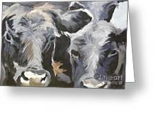 Cows In Waiting Greeting Card