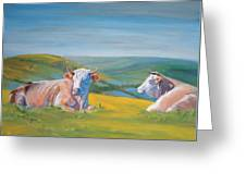Cows Lying Down Painting Greeting Card