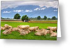 Cows On The Green Field Greeting Card