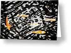Coy Fish Greeting Card