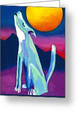 Coyote Azul Greeting Card