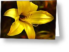 Cozy Yellow Daylily Greeting Card