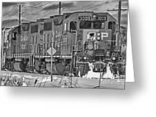 Cp Rail Train Bwtr9099-12 Greeting Card