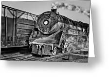 Cpr 2929 Bw Greeting Card