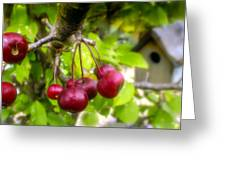 Crabapple Hill Greeting Card