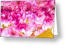 Crabapple Impressions 2 Greeting Card by Bob Orsillo