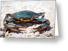 Crabby Crab Greeting Card