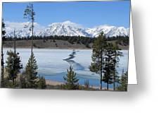 Cracked Ice On Jackson Lake Grand Teton Np Wyoming Greeting Card