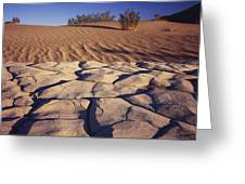 Cracked Mud - Sand Ripples Greeting Card
