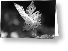 Cracked Wing Greeting Card