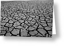 Cracks For Miles Black And White Greeting Card