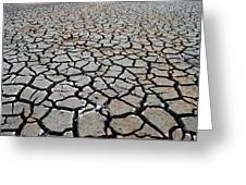 Cracks For Miles Greeting Card