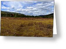Cranberry Glades Panoramic Greeting Card
