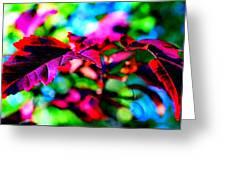 Cranberry Leaf Greeting Card