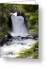 Crandel Creek Falls Greeting Card