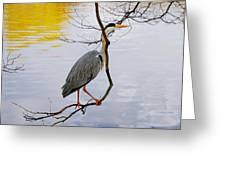 Crane Perching 2 Greeting Card