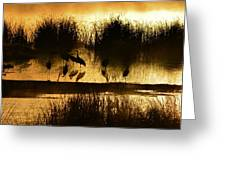 Cranes On Golden Pond Greeting Card