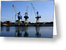 Cranes On The River Bank Greeting Card