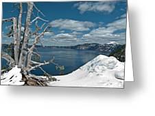 Crater Lake Tree Greeting Card