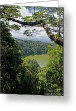 craterlake in Montagne d'Ambre National Park Madagascar Greeting Card