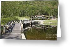 Crawford Notch State Park - White Mountains Nh Usa Greeting Card